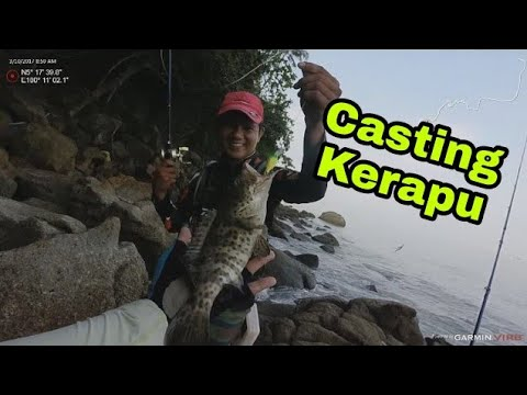 Casting kerapu di kawasan Pantai Pasir Panjang, Pulau Betong, Balik Pulau