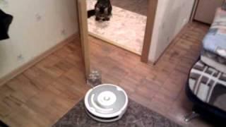 irobot roomba 520 Видео 2(Это видео загружено с телефона Android., 2010-11-04T22:00:23.000Z)