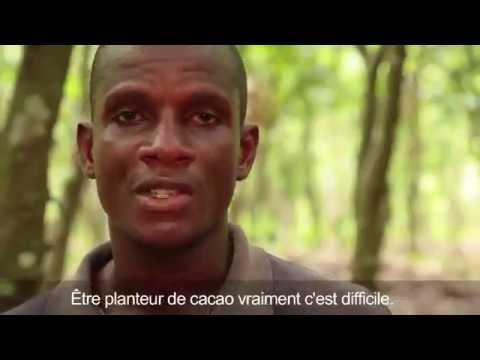 Finance numérique pour les cacaoculteurs en Côte d'Ivoire