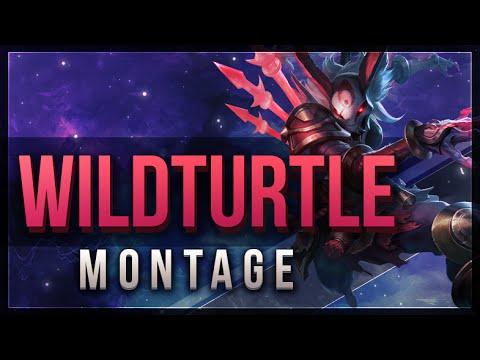 Tổng hợp highlight của WildTurtle ở vị trí xạ thủ