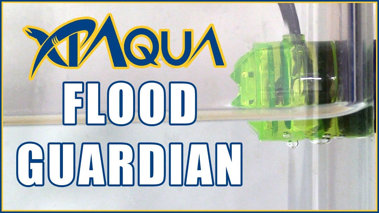 How to Install the RO/DI Flood Guardian - Electronic Auto Shut Off Valve Kit from XP Aqua Thumbnail