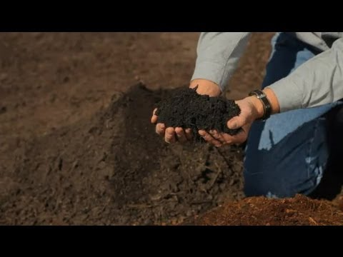 How to Help Soil Drain : Garden Savvy