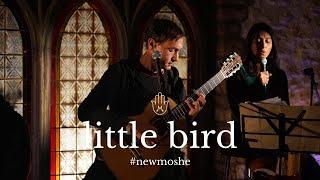 Little Bird | Moshe Halperin | Lyric Video