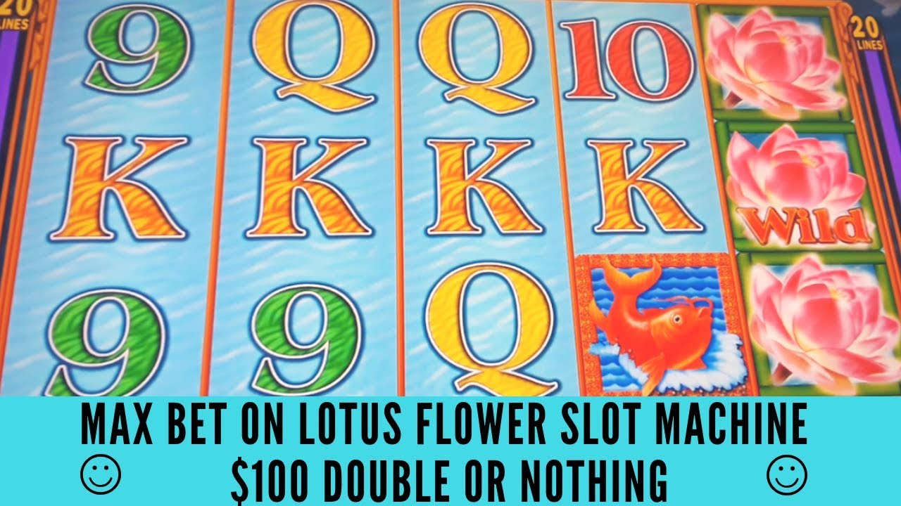Max Bet On Lotus Flower Slot Machine 100 Double Or Nothing