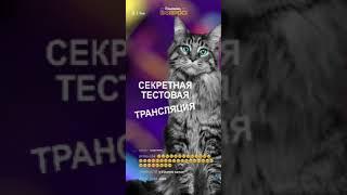Шоу ВНИМАНИЕ, ВОПРОС! - Секретная тестовая трансляция :)