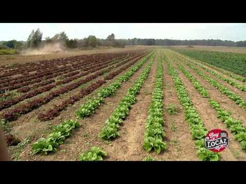 Pfenning's Organic Vegetables - Baden, Ontario