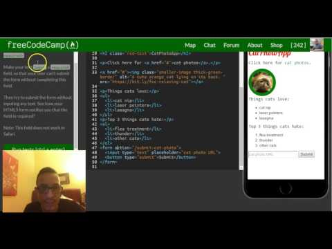 Use HTML5 To Require A Field , FreeCodeCamp Review Html & Css, Lesson 31