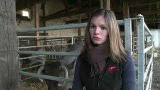 Scandale des lasagnes au cheval : des agriculteurs prônent les
