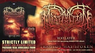 MISERATION - Waylayer (full track teaser)