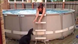 День ВМФ  🔴 купание собак в бассейне(Дед у нас ВМФ., 2014-08-04T08:14:29.000Z)