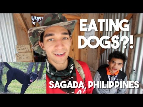 Eating Dog in the Philippines!? (Sagada Mountains)