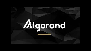 ALGORAND ALGO UPDATE +50% - Which Level Must Hold For New Cycle To Continue?