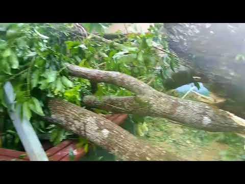 Huracan Maria Cruz Moca