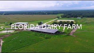 Florida Dairy Farm For Sale | 1160 Acres | FLAVIP.com