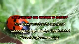 Dla dzieci   Co powie tata   Karaoke xvid1