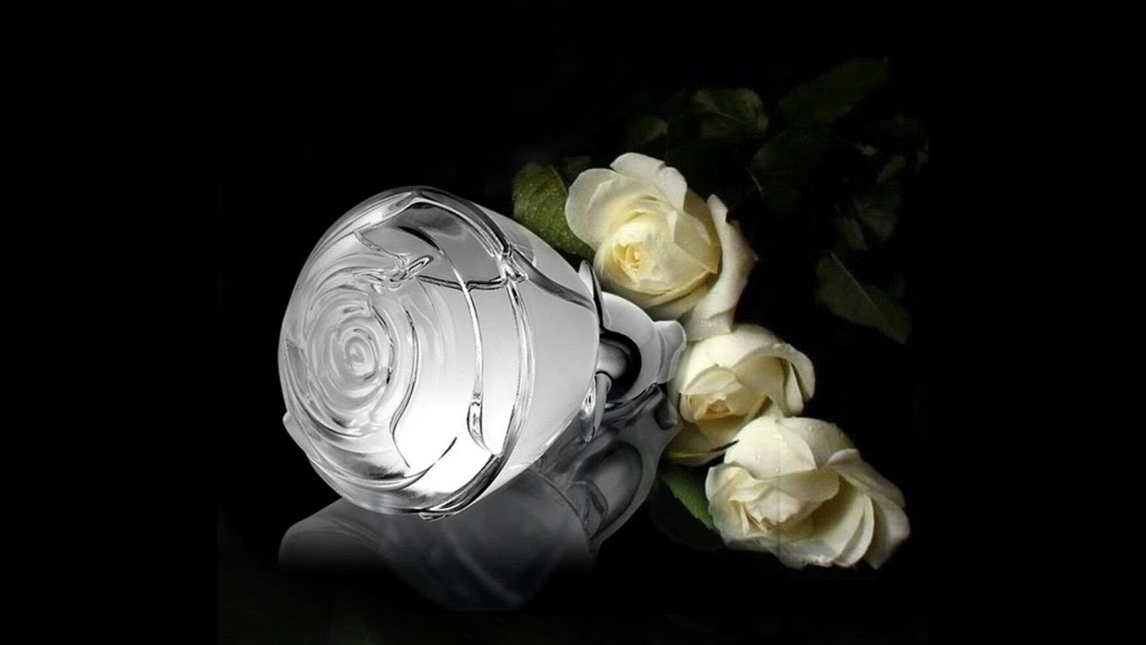 Perfume Volare Forever Oriflame Resea En Espaol Youtube Gold Eau De Parfum 50ml By Oryflame