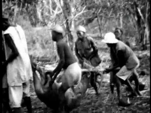 Africa Hunting Safari 1930's