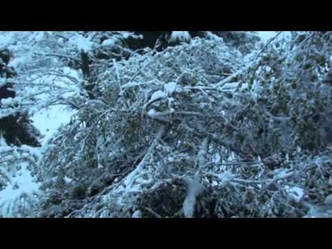 Castione della Presolana prima neve