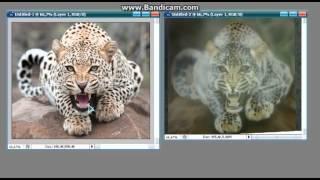 Аэрография - Как рисовать леопарда - Видео ответ по ошибкам - 2часть(Это видео ответ для моего ученика. У него маленькая проблемка с Леопардом. Рисует его в технике Аэрография...., 2014-05-17T16:12:31.000Z)