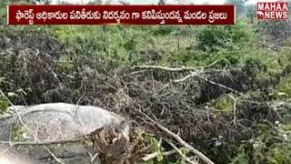 Forest Officers Also Supporting For Deforestation  | TELANGANA | MAHAA NEWS