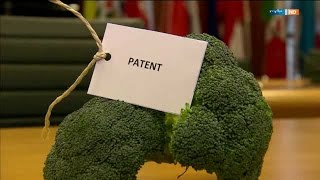 Patente auf Lebensmittel
