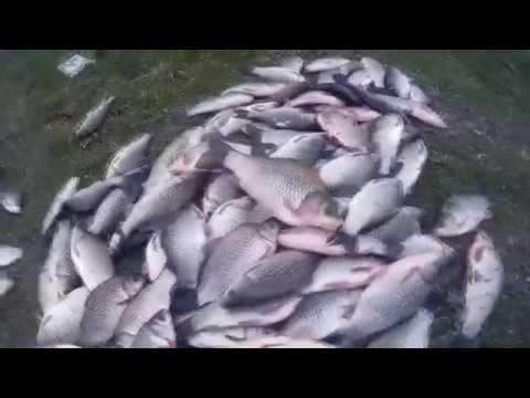 поплавочная рыбалка на карася ранней весной