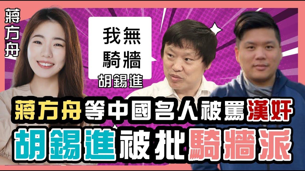 (開啟字幕)   蔣方舟等中國名人被罵「漢奸」,胡錫進被批「騎牆派」,愛國賊與民族主義,20210612