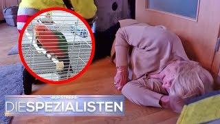 Hilferuf vom Papagei: Frau liegt seit 2 Tagen alleine in der Wohnung | Die Spezialisten | SAT.1 TV
