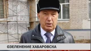 Озеленение Хабаровска. Новости. 23/03/2017. GuberniaTV