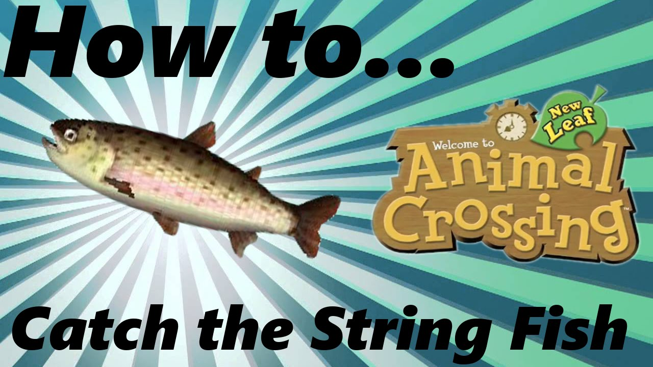 How To Catch The String Fish Youtube