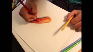 How I draw a realistic carrot - Disegnare una carota