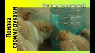 как сделать самодельную поилку для цыплят своими руками