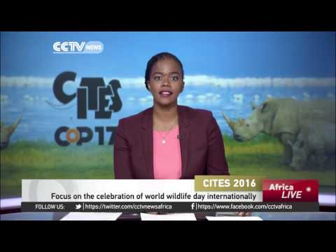 CITES 2016: Focus on the celebration of world wildlife day