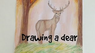 drawing a dear