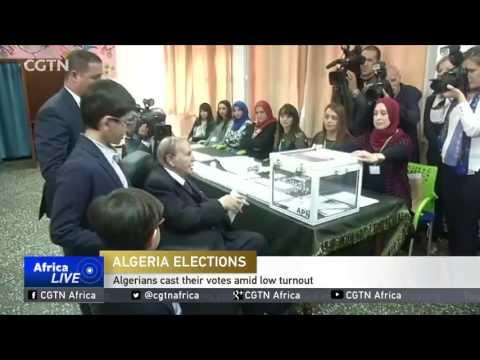 Algerians cast their votes amid low turnout