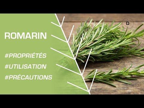 Comment utiliser le romarin ? Phytothérapie