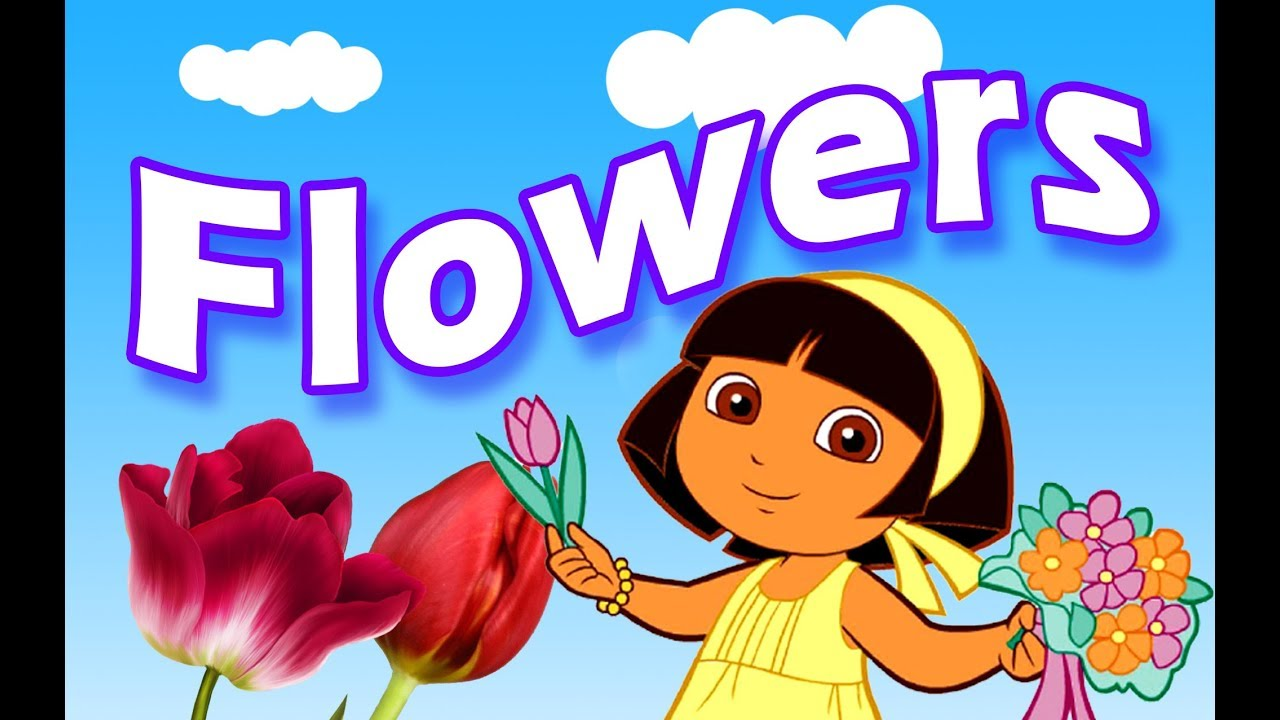 Flowers Name For Kids Flowers Name Video Youtube