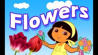 Flowers Name for kids | Flowers Name Video