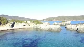 Laconella   Isola d'Elba