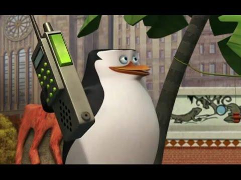 the penguins of madagascar happy king julien day dvd