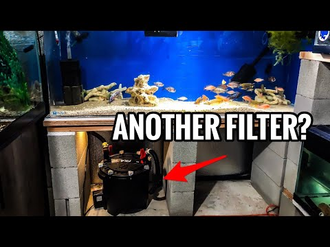 More Fish Tank Filters For Nitrates?