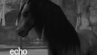 Alicia Online ~ ECHO~ [MUSIC VIDEO]