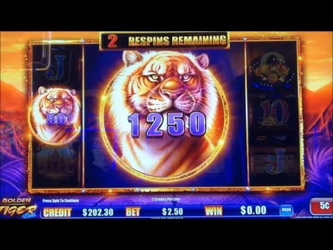 ★NEW ! BIG WIN !☆GOLDEN TIGER LINK (Ainsworth) Slot ★$100 Live Play @ Pechanga Casino☆彡栗スロ