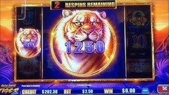 ★NEW ! BIG WIN !☆GOLDEN TIGER LINK (Ainsworth) Slot ★$100 Live Play @ Pechanga Casino☆彡栗スロ