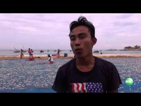Fishing in Rakhine State's Ngapali Beach