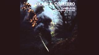 Okain & Cuartero - Cameleon - Paul Ritch Remix