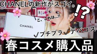 【春コスメ】購入品紹介〜CHANELの2019年新作がもはやお餅〜