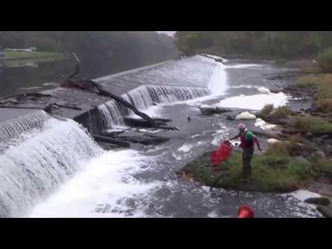CRG - Cardiff Rivers Group at Llandaf Weir - Saturday 29th October 2016!!