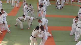 Randori au stage Technique KODOKAN 2018 1