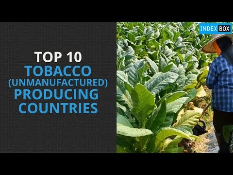 Top 10 Tobacco Producing Countries